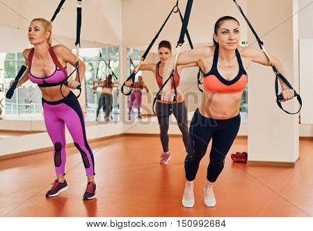 Women doing push ups training arms with trx fitness straps in the gym Concept workout healthy lifestyle sport. focus is on one girl