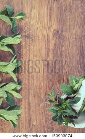Vintage Photo, Fresh Natural Green Mint With Mortar, Healthy Lifestyle, Copy Space For Text
