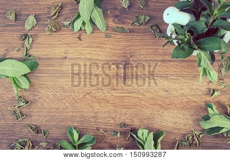 Dried And Fresh Green Mint With Mortar, Healthy Lifestyle, Copy Space For Text