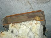 Skull In A Coffin From A Toraja Cemetary, Rantepao, Sulawesi Island, Indonesia poster