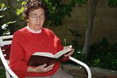 Grandmother Studies Bible In Garden