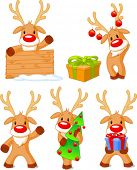 picture of rudolph  - Five separately grouped little Rudolphs - JPG