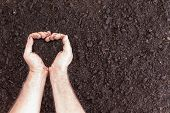 Pair Of Hands Holding Soil In Heart Shape poster