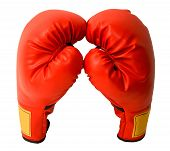 picture of boxing gloves  - This is a closeup of a pair of boxing gloves isolated on white - JPG