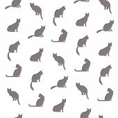 Cat Seamless Pattern. Pets Vector Background. poster