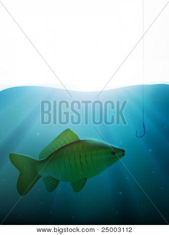 vector fish and fish hook illustration