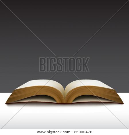 vector book illustration