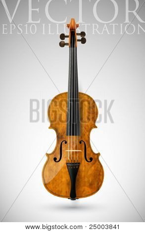 vector violin illustration