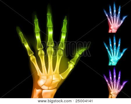 colorful vector x-ray hands