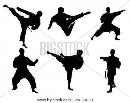 Karate-Posen