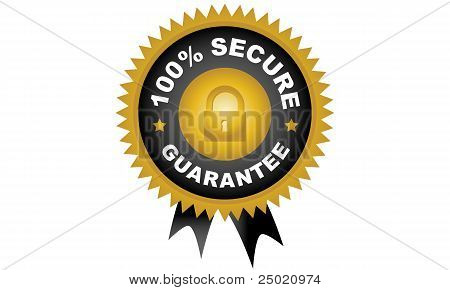 100% Secure Guarantee Seal