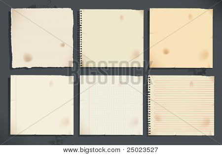 Set of notebook pages and torn paper