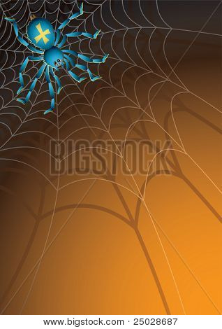 Vector illustration -  Web with a spider