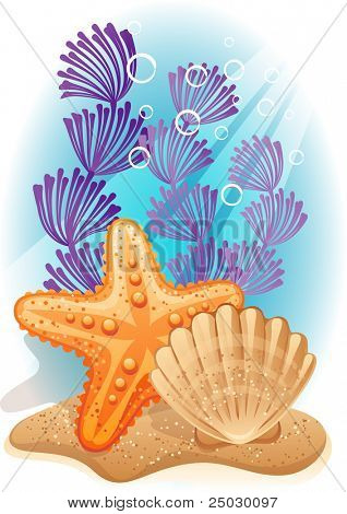 Vector illustration - tropical sea bottom