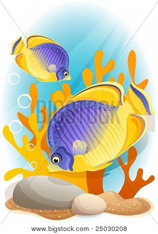 Vector illustration - Two angelfish  on the seabed