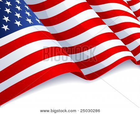USA flag in white background - raster version