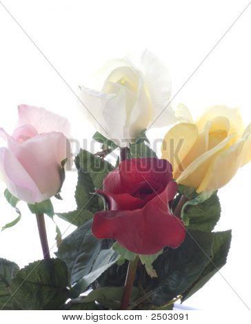 Dsc_0072_Four Roses_Gtg_ Closeup Copy