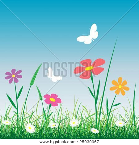 Grass with Flowers and Butterflies