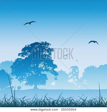 A Misty Country Meadow Landscape with Trees and Birds