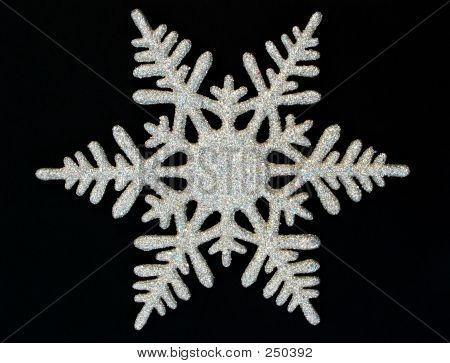 Winter  Snowflake On Black