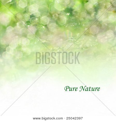 Spring, summer, or autumn background