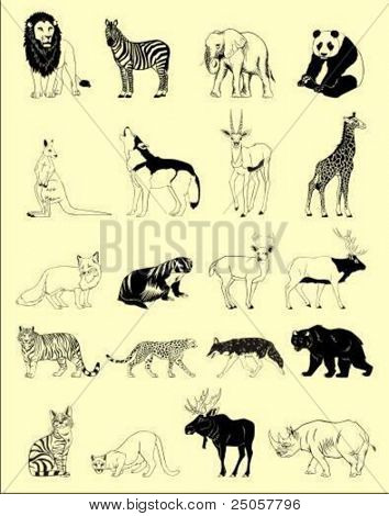 wild vector animals in black and white