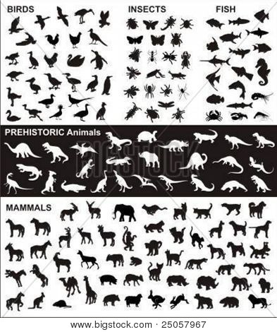 big collection of vector silhouettes of various animals