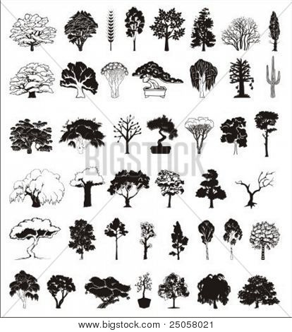 vector collection of trees (1)