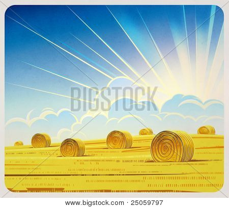 Summer rural landscape with hay