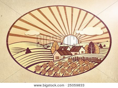 Summer rural landscape with sunflowers