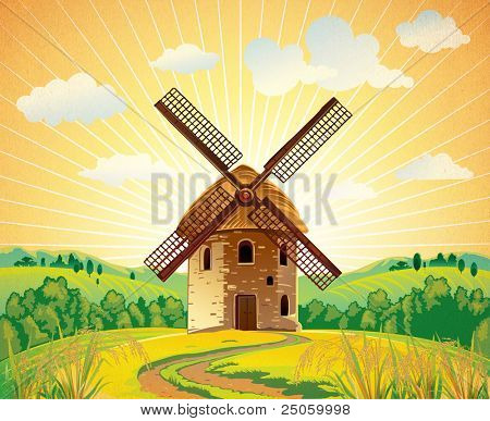 Summer landscape with a windmill