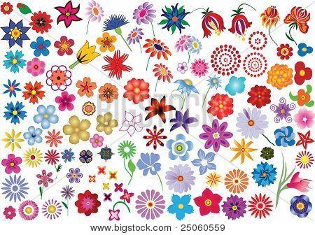 Reihe von bunten Blumen Vektorelemente - Blumen