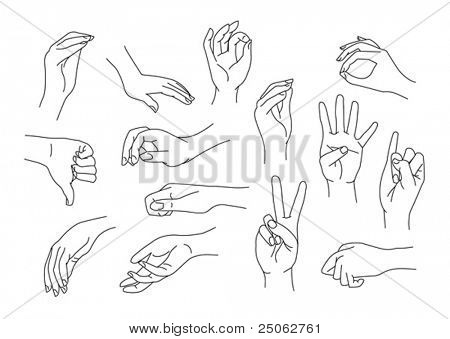 set of 14 different hand gestures