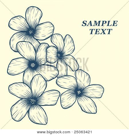 Beautiful bouquet. Vector illustration.