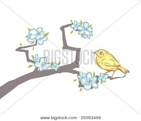 Hand-drawn bird on sakura. Vector illustration.