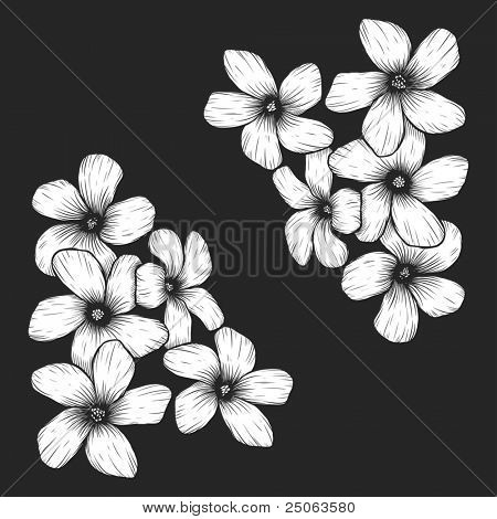Decorative bouquet. Vector illustration.