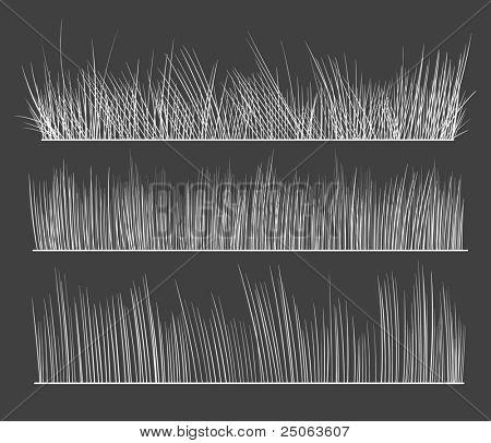 Hand-drawn grass. Vector illustration.