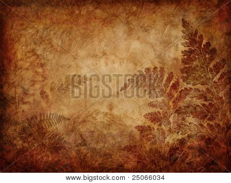 grunge fern background