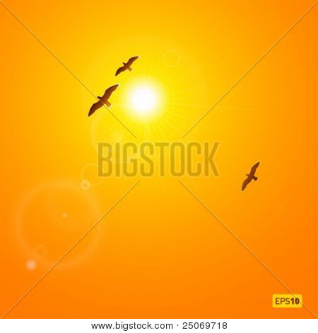 Realistic vector sun and birds with lenses flare. No mesh.