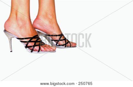 Highheeled Legs