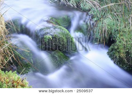 Moss Covered Mountain Stream