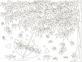 Maple Tree, Falling Maple Leaves Sketch, Umbrella Monochrome Romantic Background Coloring Book Anti  poster