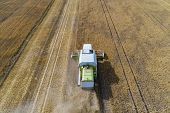 Aerial Drone View Of Harvester Combine Working On Field. poster