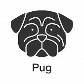Pug Glyph Icon. Mops. Companion Dog Breed. Silhouette Symbol. Negative Space. Vector Isolated Illust poster