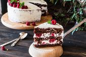 Portion Of Layered Creamy Fruit Cake With In Close Up View. Raspberry Cake With Chocolate. Chocolate poster