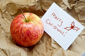 Christmas Apple Gift In Brown Paper