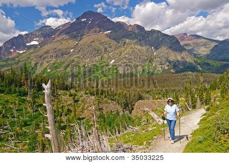 Hiker On A Mountain Trail