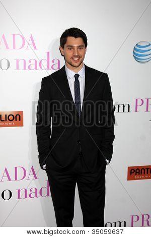 LOS ANGELES - JAN 18:  Nicholas D'Agosto arrives at