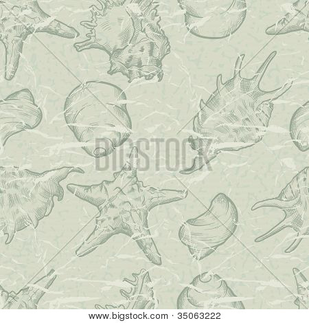 Seamless background with shells. Hand drawn illustration.