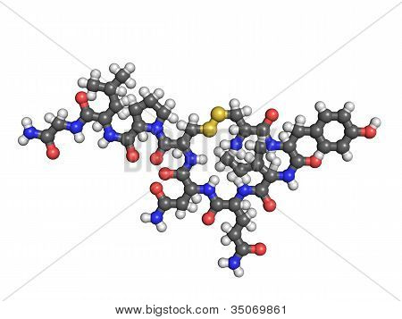 Oxytocin Molecule On White